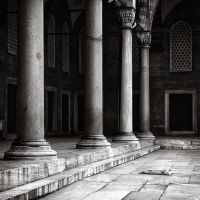 Light and Shadow by kpavlis