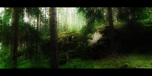 Mysterious Forest by Mikkoliini