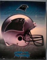 Carolina Panthers Poster by tetsigawind