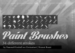 Paint Brushes - Strokes by NaamahVonhell