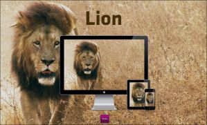 Lion by SloAu
