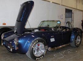 427  Shelby Cobra by boogster11