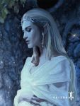 Galadriel and Her Mirror det. by Valerhon