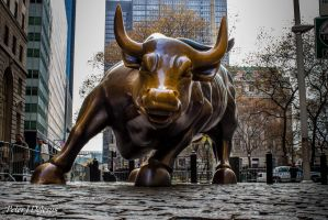 Artist's Gift - The Charging Bull by peterjdejesus