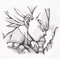 Vegeta by HIsociety