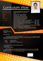 My Curriculum Vitae by theXIVdesigns