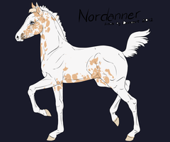Foal For Sale Nord 2500 by NorthEast-Stables