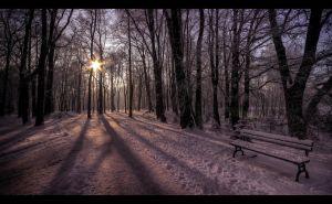 Winter scenery... 6 by PawelJG