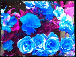 more blue flowers by Piscese16