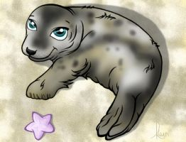 Seal Pup by Kaly89