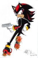.:Shadow the Hedgehog:. by NinjaHaku21