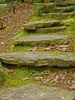 Steps by luckey09