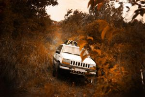 There's only one. Jeep. by yagahara