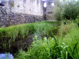 Moat jungle by KittyLiou