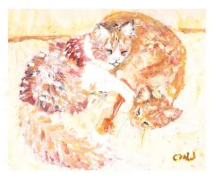 Sunbathing Cats by caitiedidd