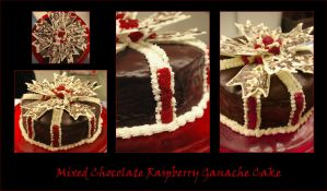 Mixed Chocolate Raspberry Cake by Scotophobic