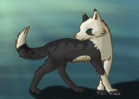 Wolf by Silvaina