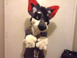 My first homemade fursuit  by jessicathechips