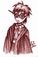 MAI HARRY POTTER by SkyPirateDash