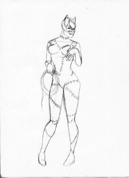Catwoman WIP by 2lazy2talk