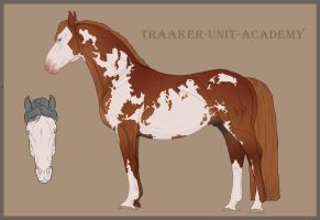 Traaker Import 12 |HOLD| PREGNANT by BRls-love-is-MY-Live