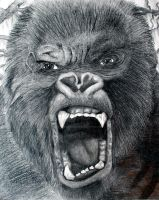 King Kong by Lexi008