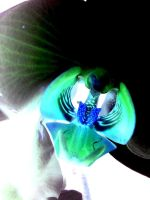 Orchid in negative by Usherette