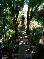 Hawaii - Suspension Bridge by kiki-bozu