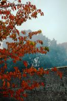 Smokin' Autumn by EarthHart