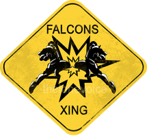Falcons Xing by VulcemTheLoneWolf