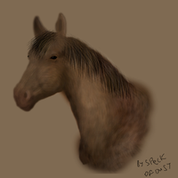 Horse by Speck--Of--Dust