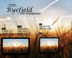 Rye Field HD Wallpaper by Simo-One