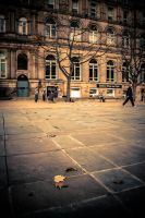 Streets of Leeds by Flyy1