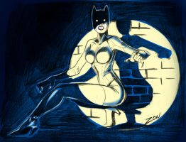 Catwoman_01 by monzon