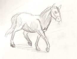 Quarter horse by DianeAarts