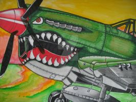 P-40 Sunset by BaronGirl
