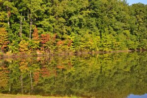 Reflections 2 9-10-11 by Tailgun2009