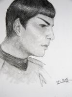 Mr. Spock by Mafii483