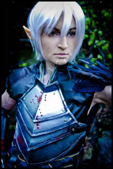 Dragon Age 2 - Warrior by love-squad