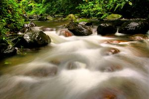 Flow - HDR by Rnd-ang