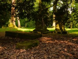 Old Forest Cemetery 2012 18 by Dragoroth-stock
