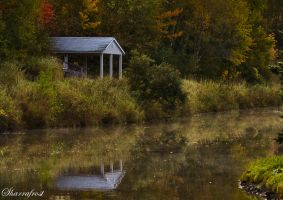 Waiting for Winter by Brian-B-Photography