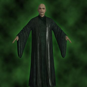 Harry Potter 8 - Lord Voldemort by jc-starstorm