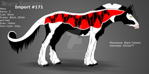 #171 - Draco Equitum Design by ToxicCreed