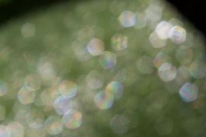 Bokeh Texture 3 by Pinkfirefly135