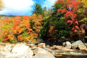 Swift River in October by Celem