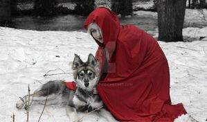 Red Lady and the direwolf by NamidaWolf