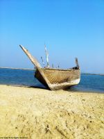 Wooden Boat by YZH619