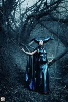 Maleficent -1185 sml by roadragebunny