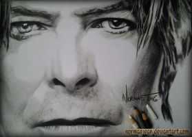 Normaearts portraitdrawing David Bowie by NormaeJean
